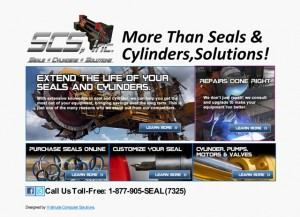 More Than Seals & Cylinders.................Solutions!